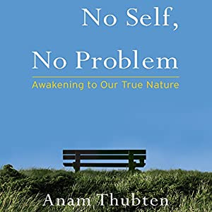No Self, No Problem Audiobook