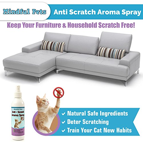 Cat Scratch Deterrent Spray Natural Training Solution To