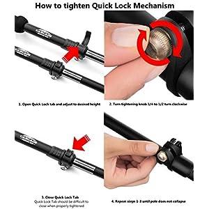 Aluminum Quick Lock Trekking Poles with Cork Grip