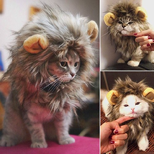 Furry Pet Hat Costume Lion Mane Wig For Cat Halloween Dress Up With Ears ()