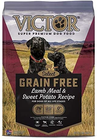 Victor Select – Grain Free Lamb Meal Sweet Potato Recipe, Dry Dog Food