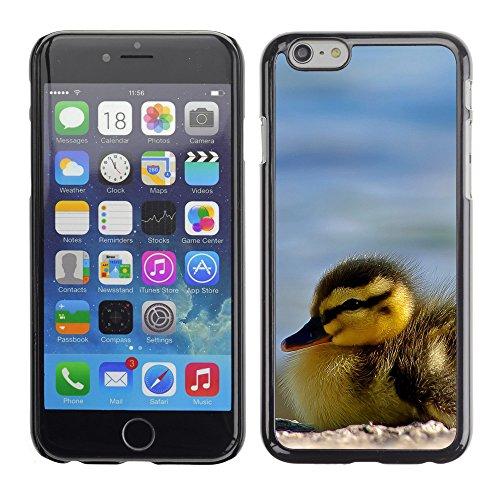 "Premio Sottile Slim Cassa Custodia Case Cover Shell // V00003263 canetons close up // Apple iPhone 6 6S 6G 4.7"""