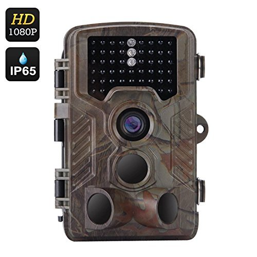 【当店限定販売】 WEIKAILTD Game Cameras 1080P HD IP65 CMOS16 Waterproof Hunting B07CRT2BF9 Inch Trail Scouting Camera with 1/3 Inch CMOS16 Month Standby 0.6 Second Trigger Time 2.5 Inch Display [並行輸入品] B07CRT2BF9, スイングシューズ:525708c6 --- martinemoeykens-com.access.secure-ssl-servers.info