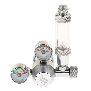 FLAMEER Medidor de descompresión de CO2 Accesorios Herramineta Fácil Instalación de Pecera Elegante: Amazon.es: Productos para mascotas