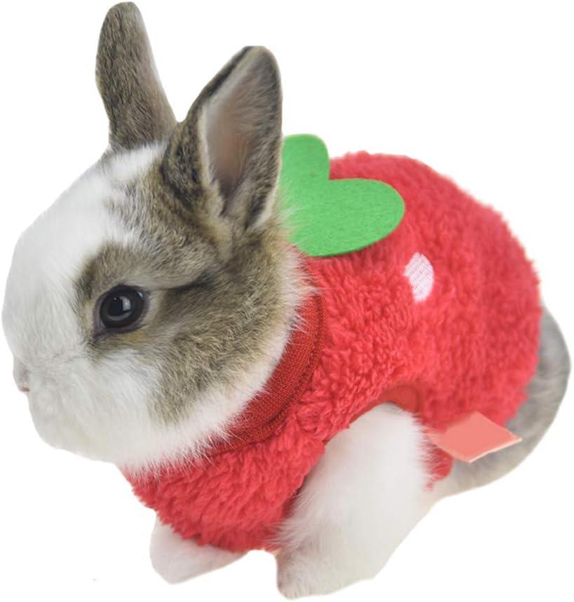 Coloring Pages: Littlest pet shop coloring pages bunny rabbit ... | 867x821