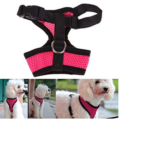 Hunde-Brustgeschirr aus Air-Mesh: Laufgeschirr, Führgeschirr, Step-In, verstellbar, Zugentlastung, atmungsaktiv, leicht, gepolstert, luftdurchlässig, weich, soft, stark, stabil, farbig, für große und kleine Hunde - verschiedene Farben und Größen XS, S, M, L, XL