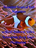 Beautiful tropical fish aquarium 10 hour ambient video relaxation sleep yoga meditation
