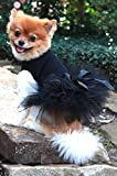 Dog in the Closet, Black Tutu Dress For Sale
