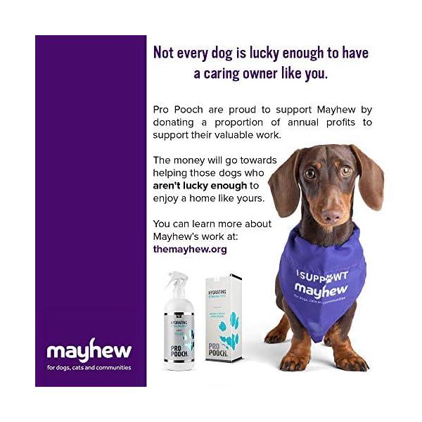 Pro Pooch Dog Detangler Spray (500 ml)   Hypoallergenic Leave In Conditioner Spray For De Matting   Leaves Fur Tangle Free   50% Less Brushing Time   Professional Groomer Formula 7