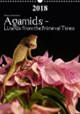 Agamids - Lizards from the Primeval Times 2018: Photos of Oriental Garden Lizards in Their Natural Habitat (Calvendo Animals)