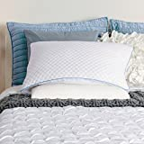 Egg Shell Foam Bedding Sealy Half & Half Bed Pillow