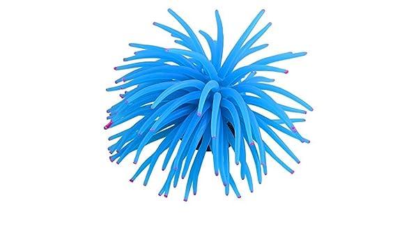 Amazon.com : eDealMax acuáticos ornamentales Coral blando Paisajismo acuático, DE 4, 7 pulgadas, Azul/rosa : Pet Supplies