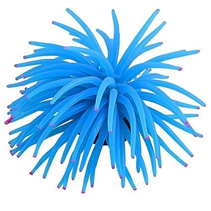 eDealMax acuáticos ornamentales Coral blando Paisajismo acuático, DE 4,7 pulgadas, Azul/