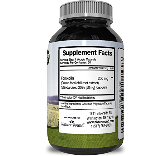 Pure And Natural Forskolin For Weight Loss Coleus Forskohlii Root Weight Loss Pills For Men & Women Boost Energy + Testosterone Best Forskolin Extract To Burn Belly Fat By Potent Natural Labs