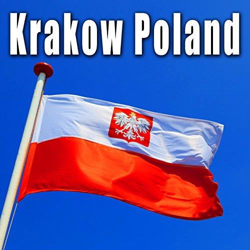 Krakow, Poland, Café Restaurant, Medium Crowd, Heavy Ambience, Dishes, Refrigeration in Background