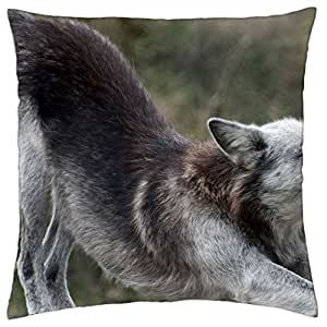 wolf stretch - Throw Pillow Cover Case (18