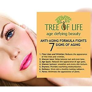 ToLB Vitamin C Facial Cleanser 72% ORGANIC - Anti Aging Anti Wrinkle Moisturizer Cleanser & Rejuvenator - 4 Ounce