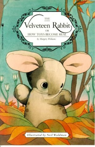 Used Book Buyback The Velveteen Rabbit Or How Toys Become Real