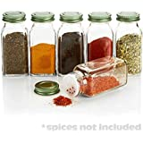6 Large Square Glass Spice Bottles 6 oz Jars with Simply Organic Style Metal Lids, Shaker Tops by SpiceLuxe
