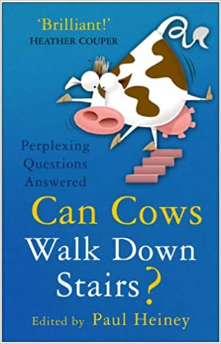 cows can t go down stairs