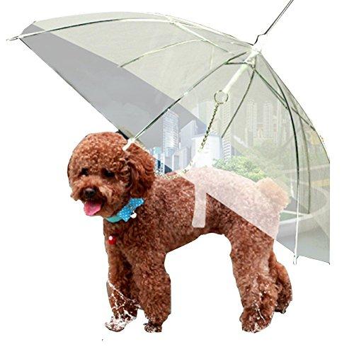 Transparent Umbrella Built Leash Comfortable