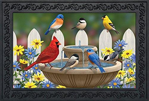Briarwood Spring - Birdbath Gathering Spring Doormat Floral Indoor Outdoor 18