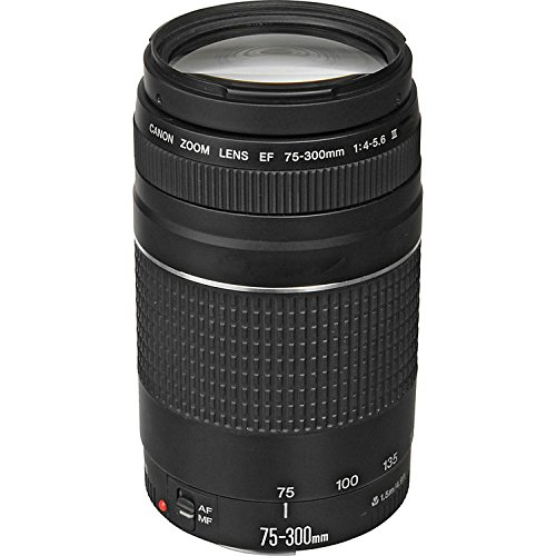 canon-ef-75-300mm-f-4-56-iii-zoom-lens-with-uv-filter-for-canon-eos-7d-60d-eos-rebel-sl1-t1i-t2i-t3-