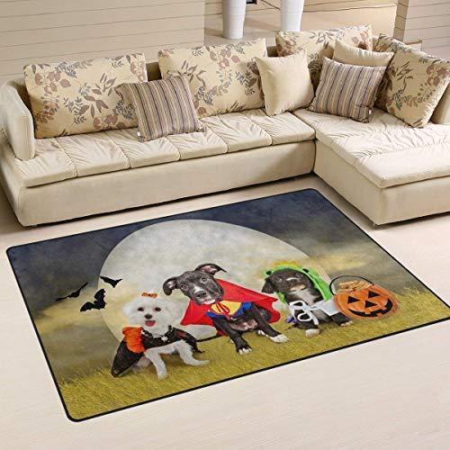 YYERINX Hipster Puppy Dog Dressed in Halloween Costumes Area Rug Rugs Non-Slip Floor Mat Doormats for Living Room Bedroom 16 x 24 inches