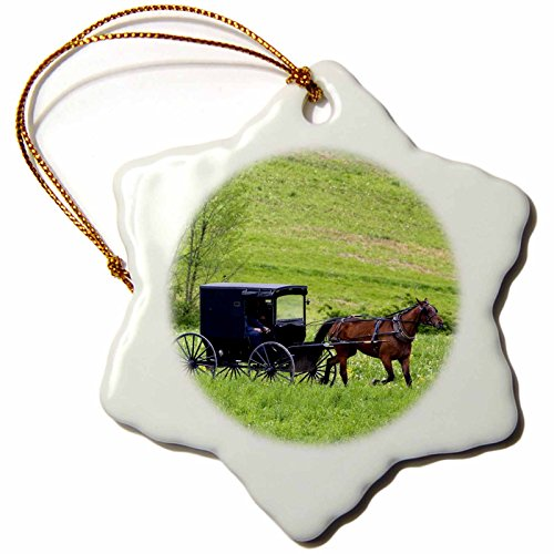 3dRose orn_93371_1 Amish Farm with Horse Buggy Near Berlin, Ohio-Us36 Dfr0018-David R Frazier-Snowflake Ornament, 3-Inch, Porcelain