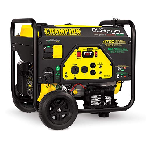 (Champion 3800-Watt Dual Fuel RV Ready Portable Generator with Electric Start)