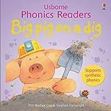Big Pig On A Dig Phonics Reader (Phonics Readers)