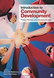 Introduction to Community Development 1st Edition