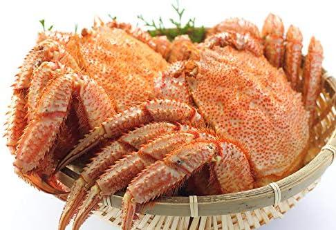 最高ランク 毛ガニ 500g 2尾セット 堅蟹をボイルし急速冷凍!極上毛ガニ! 毛ガニ 特大 ボイル 冷凍 かに カニ 蟹 けがに カニ味噌 かに味噌 お取り寄せ 海鮮