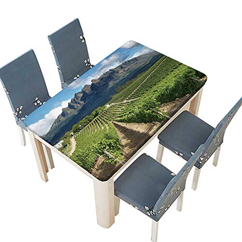 PINAFORE Polyester Vineyards Landscape Near Wellington,South Africa Table W37.5 x L76.5 INCH (Elastic Edge)