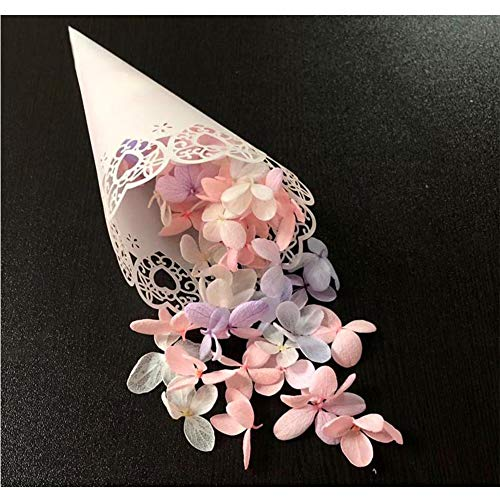 (BEYST 100pcs Wedding Confetti Cone,Hollow Print DIY Petal Toss Lace Cones for Wedding Party Celebration Can Hold Mini Bouquet Candies(Heart))