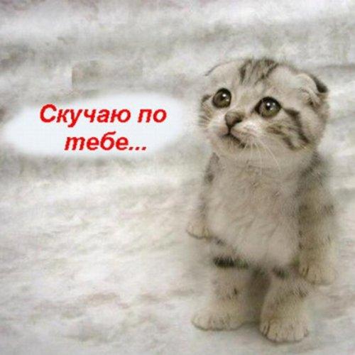 Amazon.com: Lonely Star: Vlad Topalov: MP3 Downloads