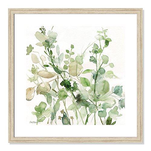 Casa Fine Arts Sage Garden II Green Modern Floral Botanical Archival Watercolor Art Print, 22.5