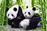 TianMai Version 3.0 HD Paint By Number Kits for Adults PBN Kit Paintworks Digital Diy Oil Painting Canvas Kits for Children Kids Beginner White Christmas Decorations Gifts - Panda (N3, Framed)