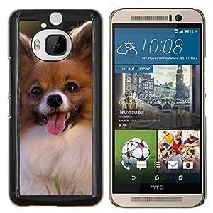 KLONGSHOP // Cubierta de piel con cierre a presión Shell trasero duro de goma Protección Caso - Papillon Chihuahua pequeño perro canina - HTC One M9Plus M9+ M9 Plus //