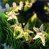 Christmas Solar String Lights,WONFAST 20ft 30 LED Starfish Fairy Decorative Lighting for Indoor/Outdoor Home, Patio, Lawn, Garden, Party and Seasonal Holiday (Warm White)