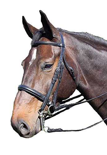 Vespucci Voyager By Plain Raised Weymouth Bridle with Leather Reins and Bradoon Rein, Black, Cob (Bridle Weymouth)
