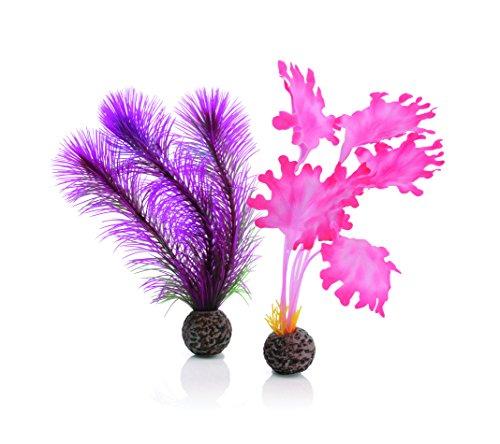 Image of biOrb 46081.0 Kelp Set Small Pink Aquariums