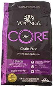Wellness CORE Natural Grain Free Dry Dog Food, Senior, 4-Pound Bag