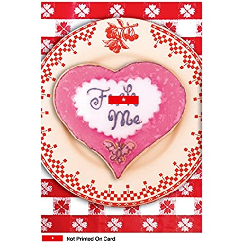 NobleWorks 2090 Fck Me Funny Valentine's Day Unique Greeting Card, 5 x 7 Sales