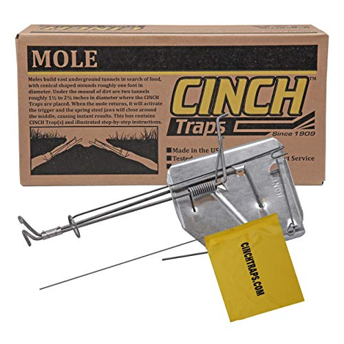 Cinch Mole Trap with Tunnel Marking Flag (Small) Heavy-Duty, Reusable Rodent Trapping System | Lawn, Garden, and Outdoor Use | Weather Resistant Steel (Cinch Traps)