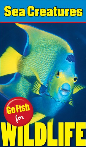 Go Fish for Wildlife: Sea Creatures: Wenda O'Reilly