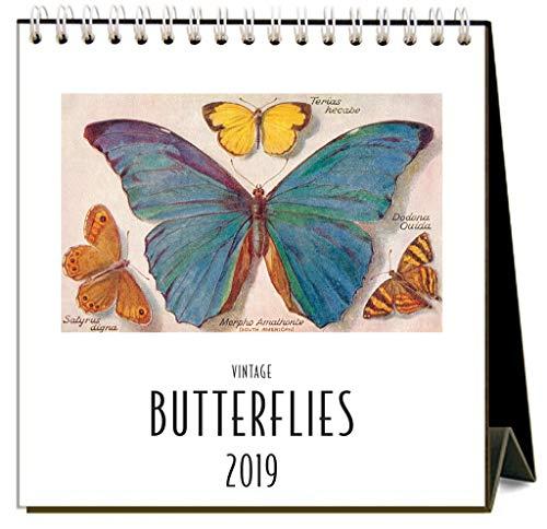 (Butterflies 2019 Easel Desk Calendar by Found Image Press)