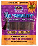 Ark Naturals Sea ''Mobility'' Beef Jerky with Sea Cucumber