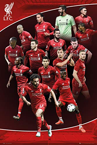FC Liverpool - Premier League Soccer Poster (The Players - Season 2018/2019) (Size: 24