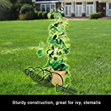 Spiral Plant Holder Home Container Trellis For Ivy Philodendron And Other Compact Climbers Decorative Holder Support Climbing Pot Plants Adding Height and Variety To Garden Lawn Patio Potted Vines